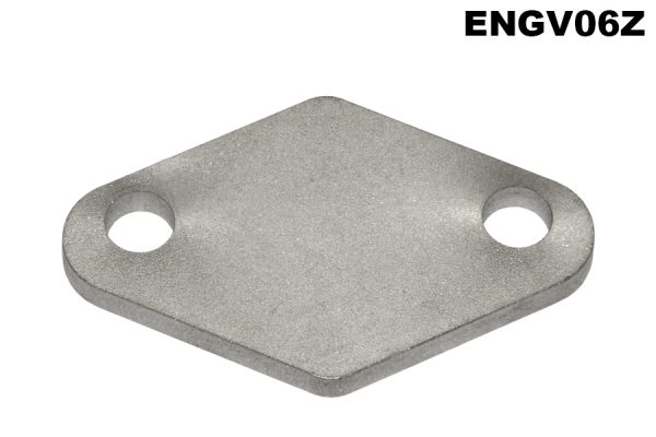 Inlet manifold, exhaust passage blanking plate, V12